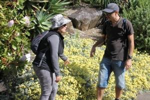 Gardening4u Horticultural Consultation